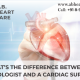 difference between cardiologist and cardiac surgeon